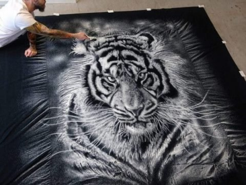 Artist Creates Incredibly Detailed Artworks with Kitchen Salt
