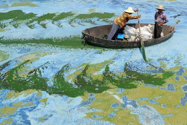 Fascinating Photos Jianan Yu