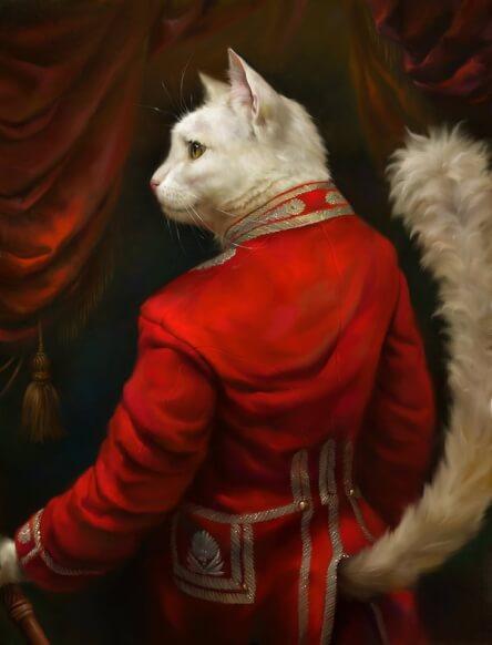 formal cat