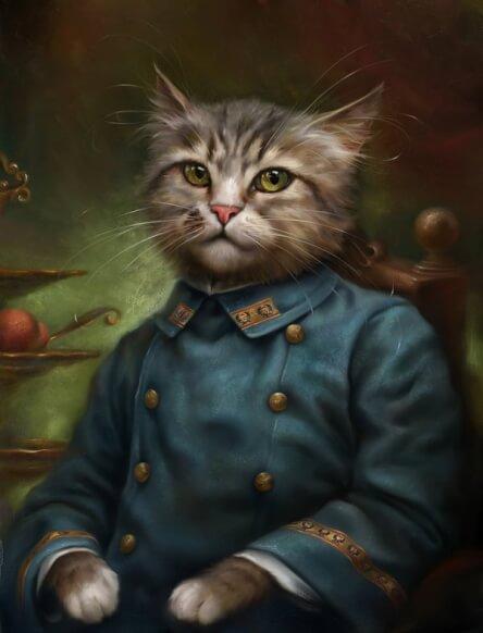 formal cat 4