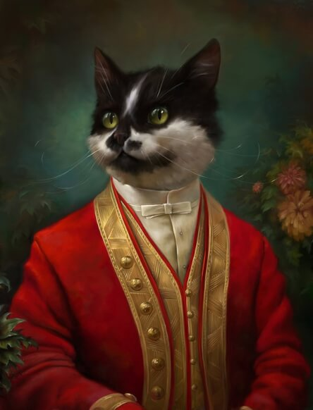 formal cat 5