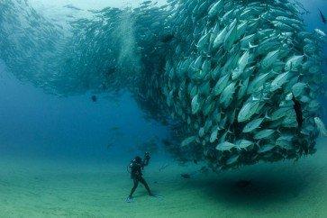 underwater spirals default