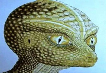 three alien species reptilian