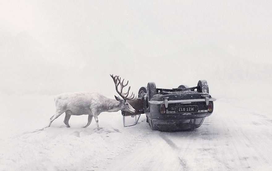 Martin Stranka, Czech Republic National Award