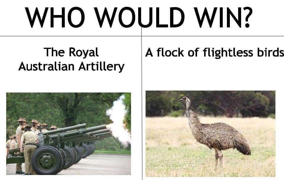 embarrass-emus-war