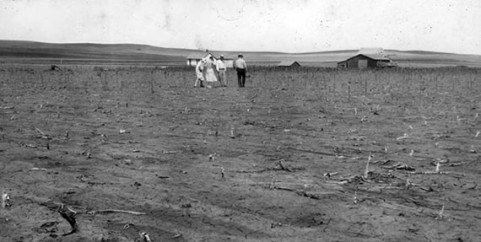 The Locust Plague Of 1874