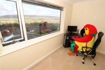 Man In Colorful Parrot Costume Helps To Sell Houses Online