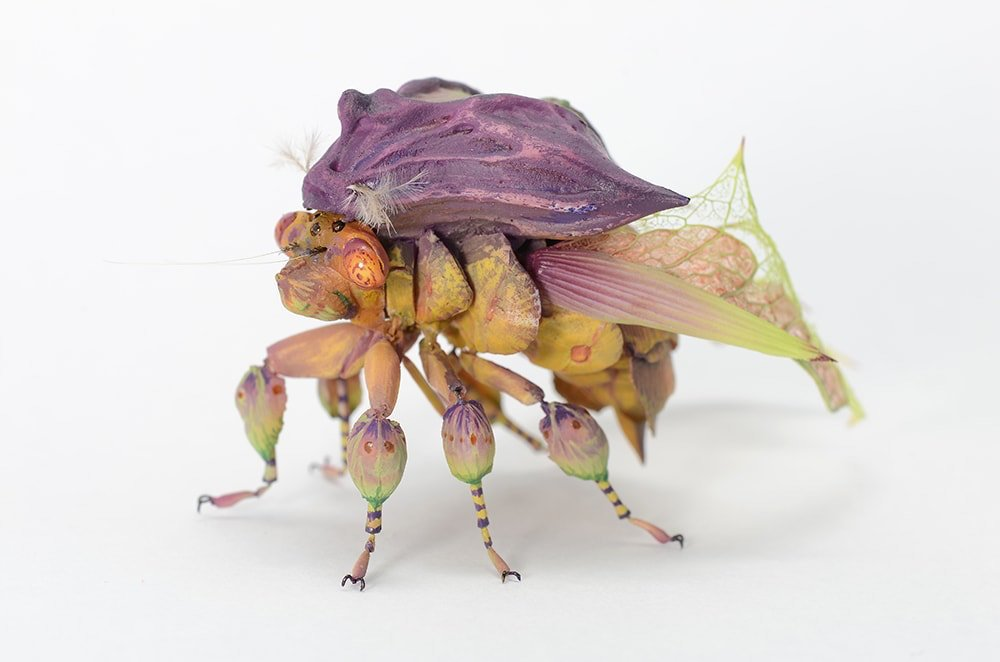Imaginative Insects 11