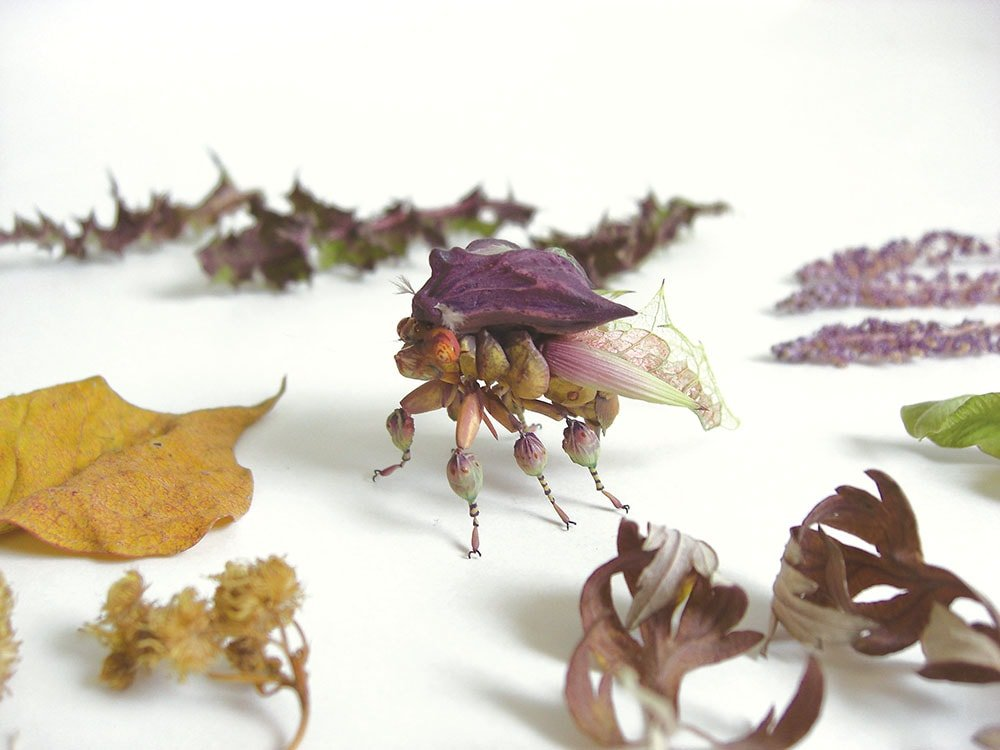 Imaginative Insects 6