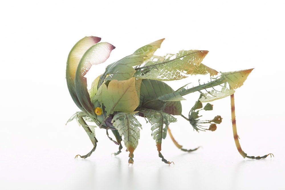 Imaginative Insects 7