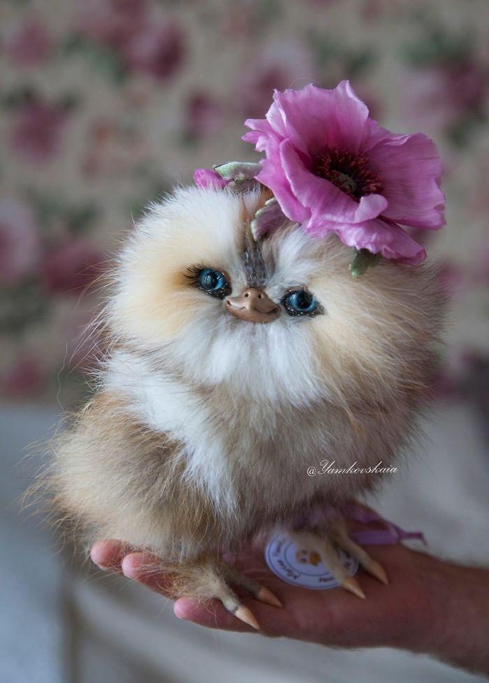 cute owls 10
