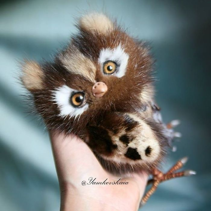 cute owls 13