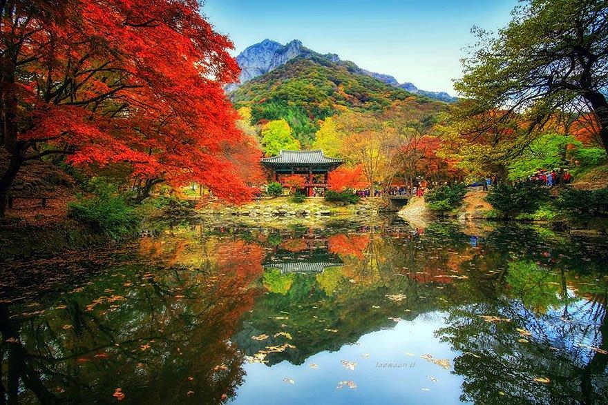 korean beauty 11