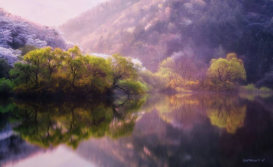 korean beauty 2